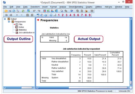 video tutorial for spss spss output viewer window