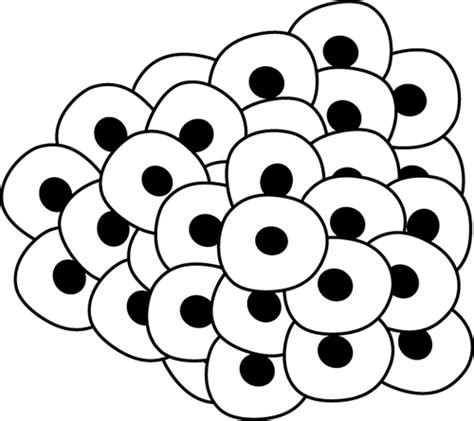 frog eggs coloring page egg clipart black and white clipart panda free clipart