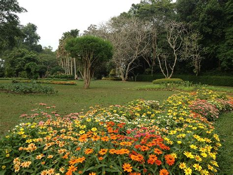 What Is Botanical Garden Henarathgoda Botanical Garden