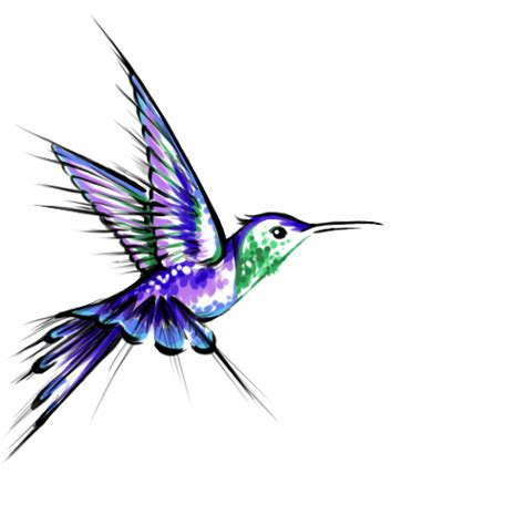 colorful hummingbird tattoo designs 38 hummingbird designs and ideas