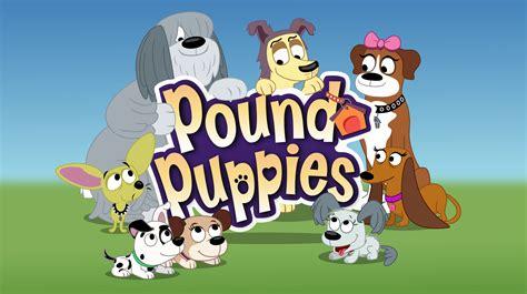 pound puppies 2010 list of episodes pound puppies 2010 wiki