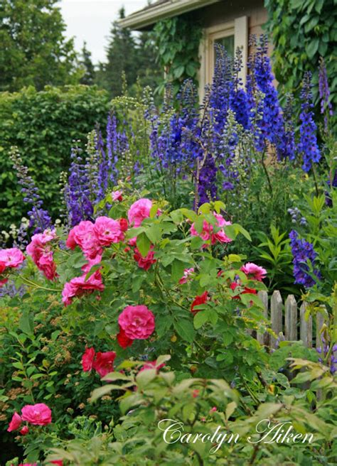 7 Ideas To Create A Relaxing Cottage Garden Shady Meadow Fashioned Garden Flowers