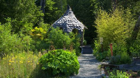 Botanical Gardens Tofino Tofino Botanical Gardens In Tofino Columbia Expedia