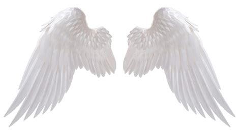 pictures angel wings drawings art gallery