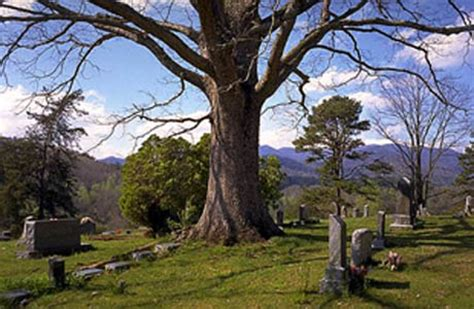 Bedford County Records Bedford County Tn Cemeteries