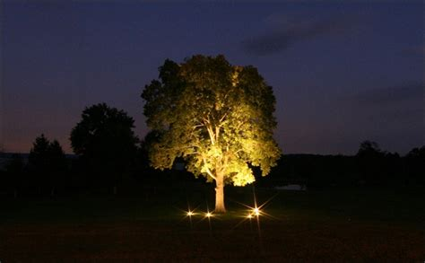 landscape lighting uplight trees outdoor furniture design and ideas