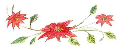 imagenes flores de nochebuena dibujo flor de nochebuena imagui