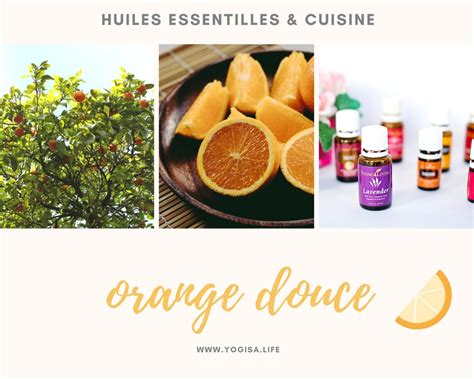 huile essentielle cuisine huiles essentielles et cuisine 1 le g 226 teau 224 l orange