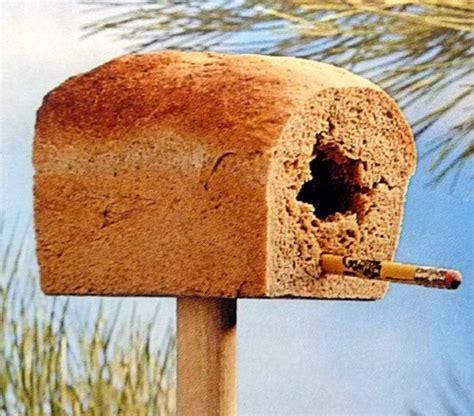 3365 best images about bird feeders bird baths bird
