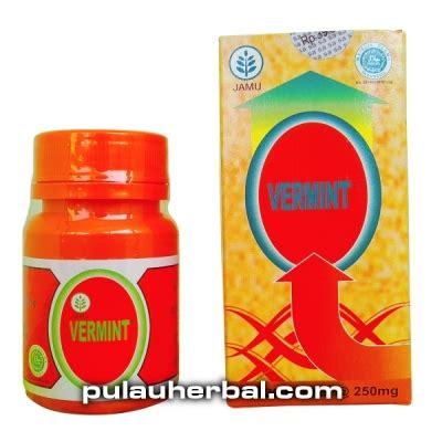 ekstrak cacing tanah obat tipes panas demam kapsul