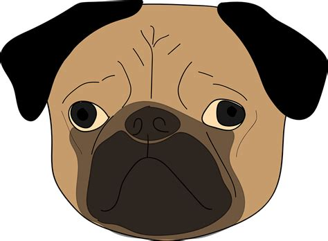 pug vector free free vector graphic the pug puppy animal free image on pixabay 827711