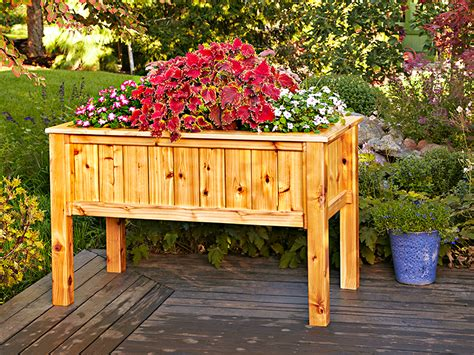 raised planter box raised planter box woodworking plan from wood magazine