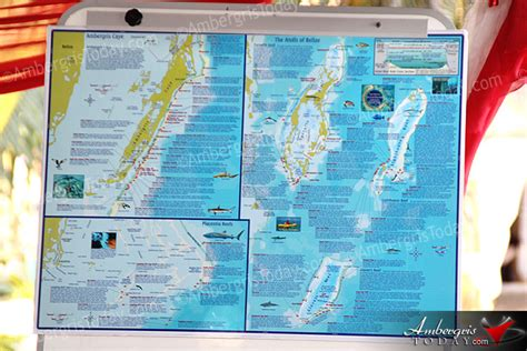 official website of the belize tourism board travel belize belize tourism board launches belize dive map ambergris