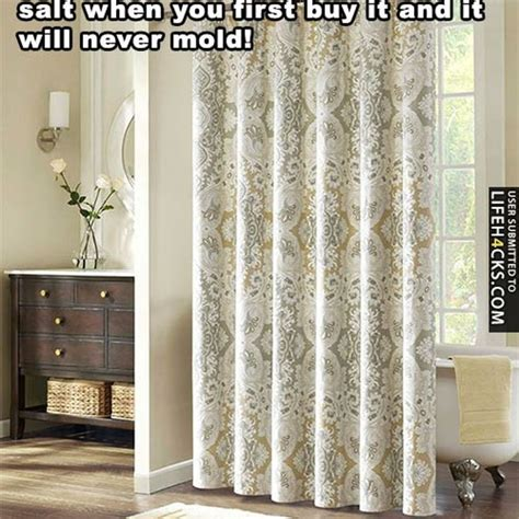 mould on curtains how to remove 1000 images about mold on pinterest before and after
