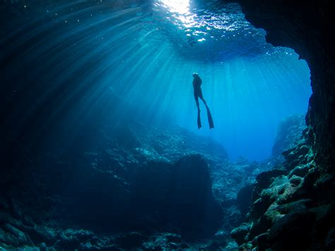 freediving photography erez beatus