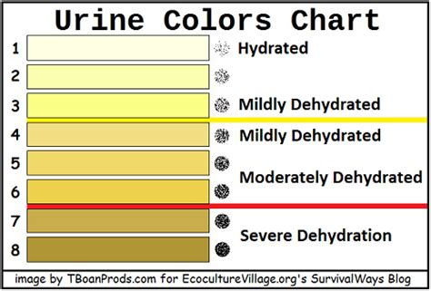 color of urine when dehydrated survive dehydration by urine wait what