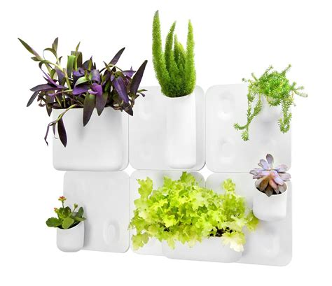 Urbio Wall Planter by Urbio Big Happy Family Flower Wall Planter Magnetic