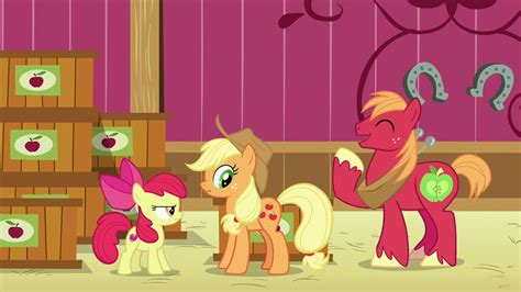 ordinary magic vignettes from the big apple books image applejack scrunches as big mac laughs