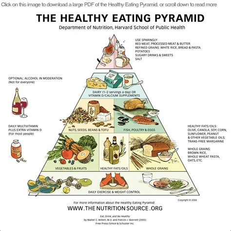 The Idea Dieting Real Facts by S A D Diets True Health True