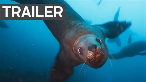blue trailer official blue planet ii official trailer 2 earth gearminded