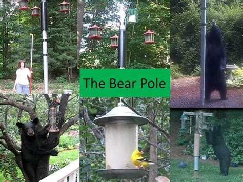 backyard deer feeder bear proof bird feeders deer proof bird feeder pole at