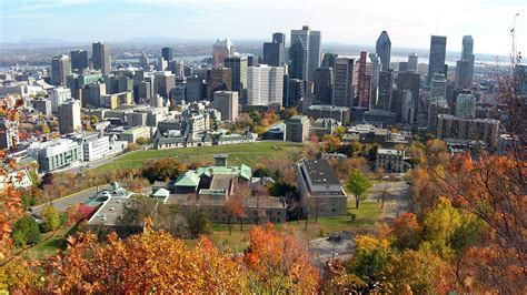 Search Montreal Mont Mont Royal Montreal Driverlayer Search Engine