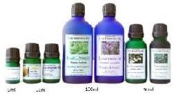 Betel Leaf Daun Sirih Essential 5ml therapeutic grade essential betel vine lotus house