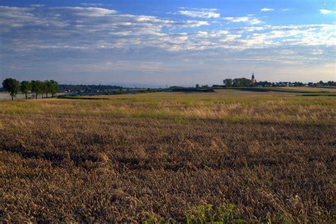 Free Images Landscape Horizon Marsh Plant Sky Farm Prairie View Landscaping