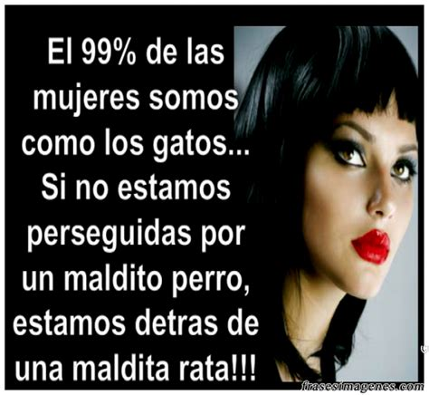 mujeres imagenes y frases las mujeres quotes quotesgram