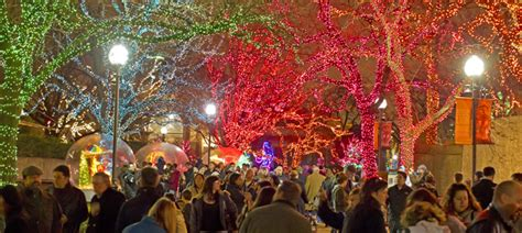 zoolights at lincoln park zoo november 28 january 4