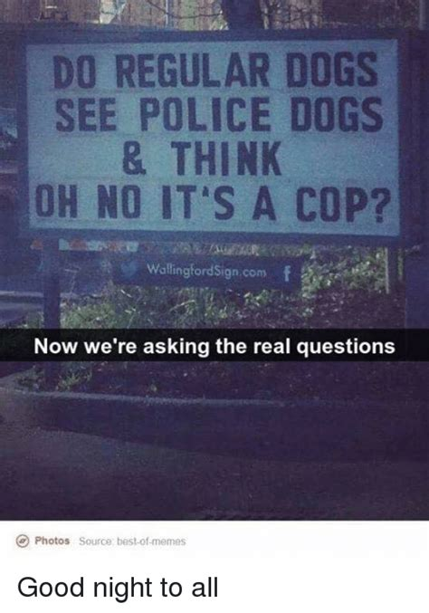 how do dogs think do regular dogs see dogs think oh no it s a cop walling ordsign now we