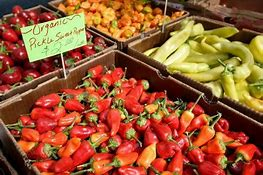 Image result for Richland Farmers Market WA
