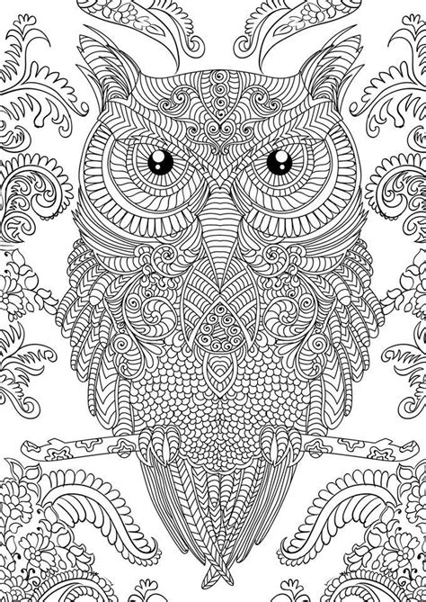 coloring pages for adults ideas 1000 ideas about owl coloring pages on pinterest coloring