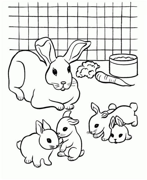 printable rabbit coloring pages for kids cool2bkids get this easy printable rabbit coloring pages for children