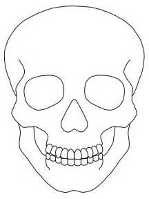 blank sugar skull template simple skull drawing free clip free clip