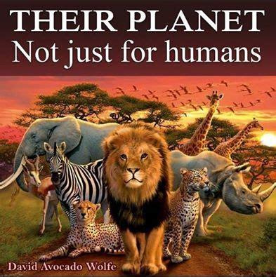 Animal World 4 world animal day october 4 2015 international day of