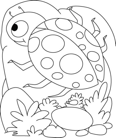 ladybug birthday coloring pages 87 best insects coloring pages images on pinterest hand