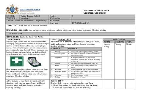 biography lesson plan grade 4 life skills lesson plan term 4