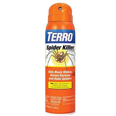 amazon com terro t2302 3200 spider killer spray and