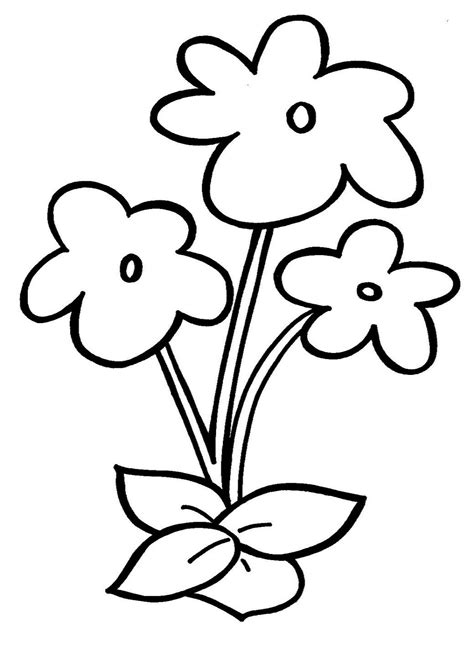 plants coloring pages preschool flowers drawings for children bouquet idea
