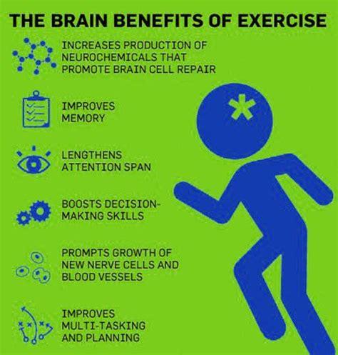brain test italiano the brain benefits of exercise healthtips brain