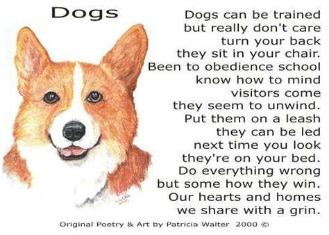poems about dogs poetry 2 by walter may preschool farm farm animals pets bugs