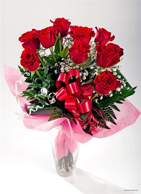 imagenes de rosas rojas image gallery rosas rojas