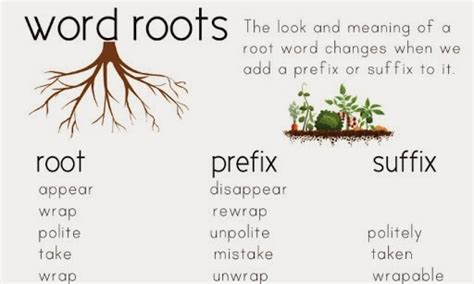 roots template in plain so many prefixes and suffixes