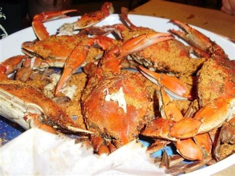 assateague crab house classic eastern shore design picture of assateague crab house berlin tripadvisor