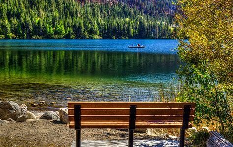 bench california image california usa june lake nature scenery bench