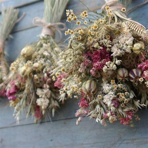 fiori secchi vendita on line fiori secchi fiori secchi comprare fiori secchi