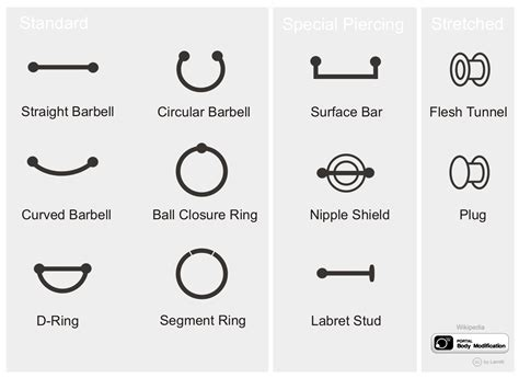 types of jewelry file piercing jewelry jpg wikimedia commons