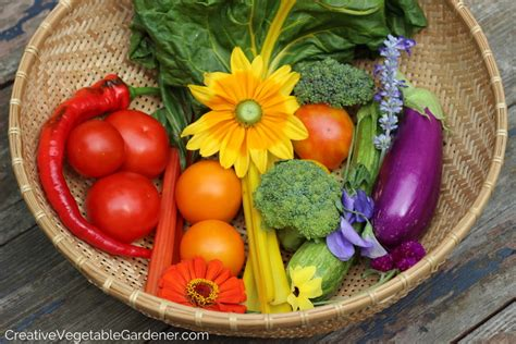 enjoy this colorful vegetable garden garden pics and tips