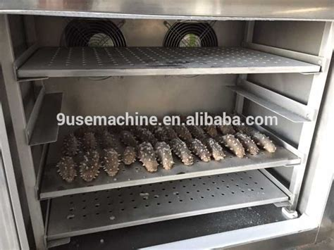 Refrigerated Chicken Shelf by Mini Industrial Used Freezing Cold Storage